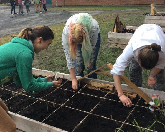 Jardiner à l'extérieur avec l'école secondaire Cairine Wilson